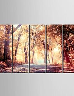 e-Home® opgespannen doek zijt de val van de mangrove decoratief schilderen set van 5