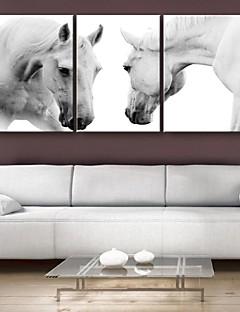 e-FOYER toile tendue es le cheval de course peinture décoration ensemble de trois
