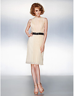 TS Couture Dress - Champagne Plus Sizes / Petite Sheath/Column Jewel Knee-length Organza