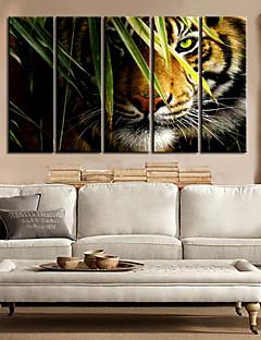電子home®は5セット森装飾画のキャンバスアート風景動物王延伸