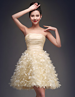 Homecoming Cocktail Party Dress - Champagne Ball Gown Strapless Short/Mini Organza