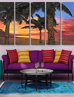 E-HOME® Stretched Canvas Art The Sea Coconut Decorative Painting  Set of 5
