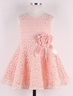 Girl's Jacquard Dress,Lace Spring Pink / White