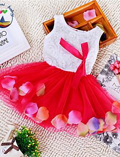 Dívka je Květinový Léto Šaty Směs bavlny Modrá / Růžová / Fialová / Červená / Žlutá