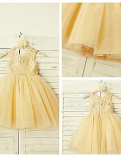 A-line Knee-length Flower Girl Dress - Lace / Tulle Sleeveless