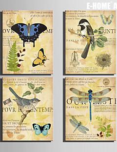 e-FOYER toile tendue art libellule papillon et oiseau peinture décoration ensemble de 4