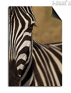 e-FOYER impression magnétique remplaçable zèbre art peinture décorative multiples optionnel style