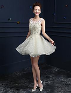 저녁 정장파티 드레스 - 샴페인 A-라인 무릎길이 쥬얼리 레이스