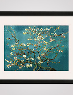 Framed Almond Blossom by Van Gogh  40x50cm Modern Canvas Print Art for Wall Decoration Ready To Hang