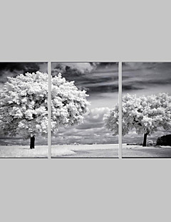 E-HOME® Stretched Canvas Art The Trees Decoration Painting Set of 3
