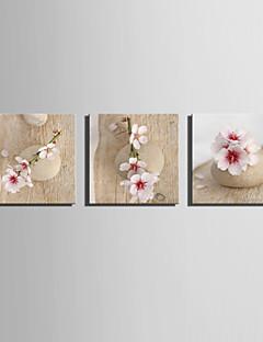 Landschap Canvas Afdrukken Drie panelen Klaar te hangen , Vierkant