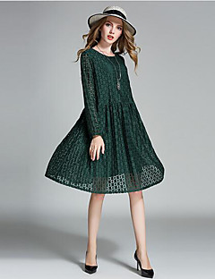 Women's Beach Vintage Lace Dress,Solid Round Neck Above Knee Long Sleeve Black Brown Gray Green Nylon Spring Mid Rise Inelastic Medium