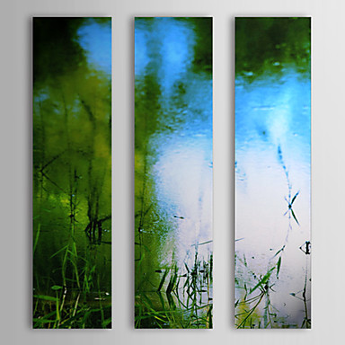 Hand Painted Oil Painting Landscape Aquatic and Water with Stretched Frame Se...