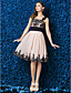TS Couture Schoolbal Bedrijfsfeest Familiebijeenkomst Jurk - Kleurenblok A-lijn Bandjes Tot de knie Chiffon Jersey metKralen Kant Sjerp /