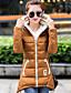 Hosszú ujj Hétköznapi / Munka / Nagy méretek Női Sportos kabátok Kabát , Poliészter / Organikus pamut