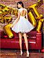 ts couture® κοκτέιλ φόρεμα κόμμα φόρεμα μπάλα κόσμημα σύντομο / μίνι τούλι με επιθήματα / beading / δαντέλα