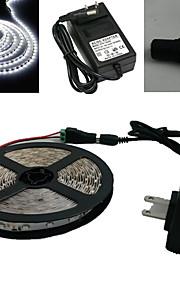 5M 300X3528 Smd Hvit Led Strip Lys og Connector og AC110-240V til Dc12V3A Trafo