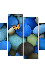 시각 star®butterflies 끊지 현대 벽 예술 블루 스톤 캔버스 인쇄 준비