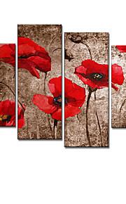 시각 star®floral는 / 식물 유화 손으로 그린 캔버스 벽 예술 수제 오일 중단 할 준비가 네 패널 그림