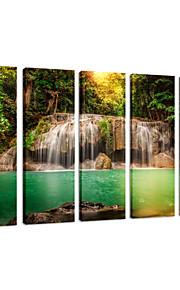 visuell star®natural landskap duk konsttryck, skog landskap kanfastryck foto, sträcks och redo att hänga
