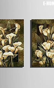 e-Home® venytetty kankaalle art valkoinen kukka koriste maalaus sarja 2