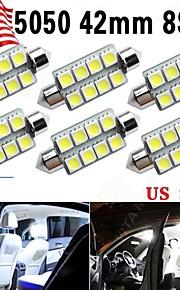 6 x 42mm 8 5050 slinger super wit 211-2 578 569 koepel kaart interieur LED lamp