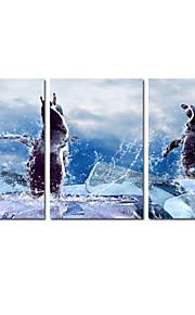 3의 아이 방 장식 동물 장식 사진 캔버스 세트에 대한 시각 star®cute 캔버스 인쇄