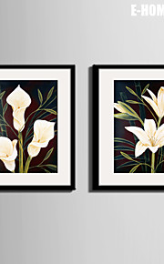 E-HOME® Framed Canvas Art, White Flowers Canvas Print Set of 2