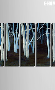 E-HOME® Stretched Canvas Art White Forest Decorative Painting  Set of 5