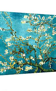 visuelle star®famous impression sur toile de haute qualité art mural prêt à accrocher