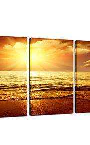 visuelle star®seascape coucher de soleil toile tendue groupe d'impression d'art mural prêt à accrocher