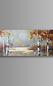 Still Life / Landskap / Botanisk / Moderne Lerret Print Et panel Klar til å henge , Vannrett