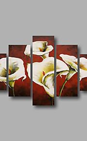 listo para colgar arte de la pared de la lona pintura al óleo pintada a mano enmarcada estirada lirio blanco marrones modernas cinco