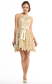 TS Couture® Cocktail Party Dress A-line Scoop Short / Mini Lace with Lace