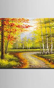 Peint à la main PaysageStyle européen Un Panneau Toile Peinture à l'huile Hang-peint For Décoration d'intérieur