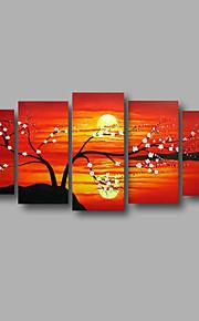 """estirada (listo para colgar) pintura al óleo pintado a mano 60 """"x28"""" pared de lona de arte moderno flores flor de la salida del sol"""