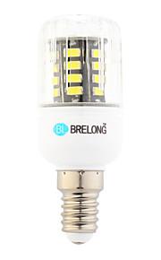 Ampoules Maïs LED Blanc Chaud / Blanc Froid 1 pièce T E14 6W 30 SMD 600 lm AC 100-240 V