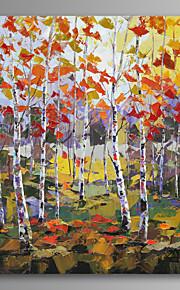 Landskap / Botanisk / Reise Lerret Print Et panel Klar til å henge,Lodrett