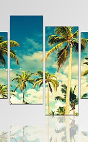 Abstrakt / fantasi / Fritid / Landskap / Fotografisk / Modern / Romantik Canvastryck Fyra paneler Redo att hänga,Horisontell