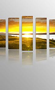 Sundown Grassland on Canvas wood Framed 5 Panels Ready to hang for Living Decor