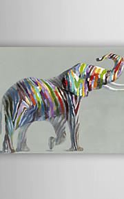 håndmalte oljemaleri dyr nydelig elefant med strukket ramme 7 veggen arts®
