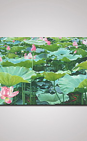 Stretched Lotus Pool Painting Print Art Landscape Picture for Office, Hotel and Livingroom Decoration 60x120cm