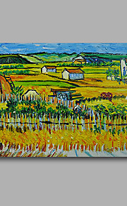 Stretched (Ready to hang) Hand-Painted Oil Painting Canvas Abstract Van Gogh repro Farm Harves Mini Size