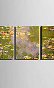 E-HOME® Stretched Canvas Art The Pond Scenery Decoration Painting  Set Of 3