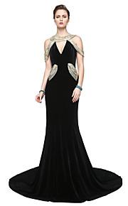 TS Couture® Formel aften Kjole - Glitrende Elegant Tube / kolonne V-hals Gulvlang Fløjl med Paillette Plissé