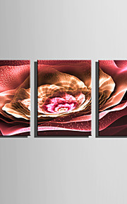 E-HOME Stretched Canvas Art The Glare Of Red Flowers Decoration Painting Set Of 3