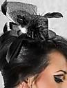 Dame Tyll Headpiece Bryllup/Spesiell Leilighet fascinators Bryllup/Spesiell Leilighet
