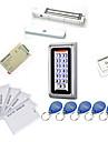 metalli vedenpitävä Access Controller sarjat (magneettinen lukko 280kg, 10 EM-henkilökortti, virtalähde)