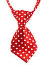 Chat Chien Cravate/Noeud Papillon Multi couleur Vetements pour Chien Ete Printemps/Automne Pois Mariage Anniversaire Mode