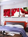 Sträckta canvas konst Blommor Rose Petal Set av 3